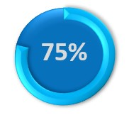 75% circle icon on Business SMS statistics