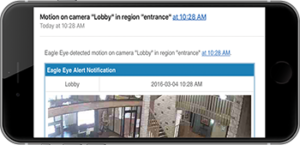 Analog and IP Camera motion detection analytics shown on mobile device in Washington DC